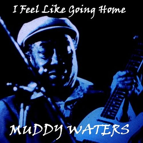 I Feel Like Going Home by Muddy Waters