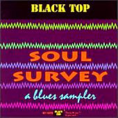 Soul Survey: Blues Sampler by Various Artists