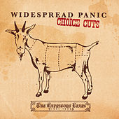 Choice Cuts: The Capricorn Years 1991-1999 by Widespread Panic