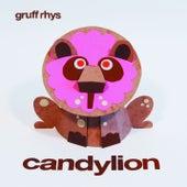 Candylion by Gruff Rhys