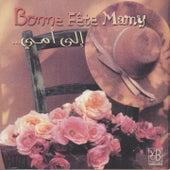 Bonne fête Mamy by Various Artists