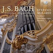 J.S. Bach: Complete Organ Music, Vol. 2 by Stefano Molardi
