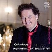 Schubert: Piano Works by Jouni Somero