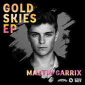 Gold Skies by Martin Garrix