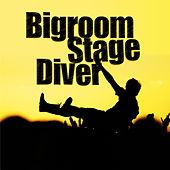 Bigroom Stage Diver by Various Artists