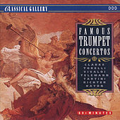 Famous Trumpet Concertos by Various Artists