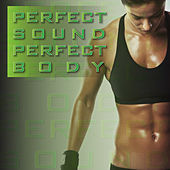 Perfect Sound Perfect Body von Various Artists