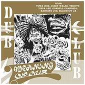 Meaning of Dub by Various Artists