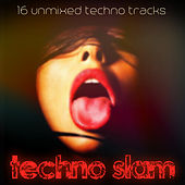 Techno Slam de Various Artists