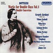 Bottesini: Works for Double Bass (Complete), Vol. 4 by Various Artists