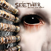 Karma and Effect de Seether