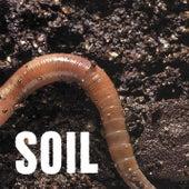 SOiL EP by Soil