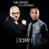 Sorry de Willy Denzey