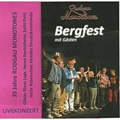Bergfest (Live) by Various Artists