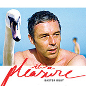 It's A Pleasure by Baxter Dury