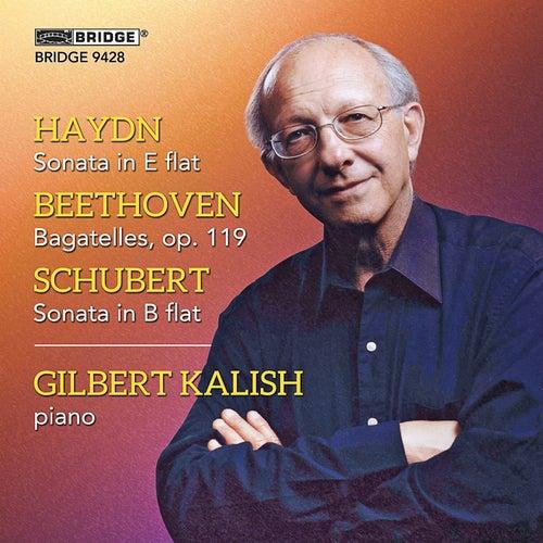 Gilbert Kalish plays Haydn, Beethoven and Schubert by Gilbert Kalish