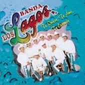 Te Quiero Te Amo by Banda Los Lagos