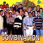 La Combinacion Vallenata, Vol. 3 de Various Artists