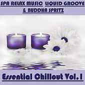 Essential Chillout, Vol. 1 by Various Artists