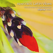 Abstract Latin Vibes (Nite Grooves 20 Years Essentials) by Various Artists