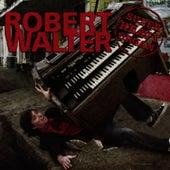 Super Heavy Organ by Robert Walter