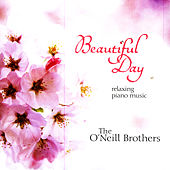 Beautiful Day by Various Artists