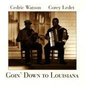Goin' Down To Louisiana by Cedric Watson