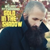 Gold in the Shadow von William Fitzsimmons