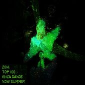 2014 Top 100: Ibiza Dance Now Summer (Essential EDM Electro Latin House Hits) by Various Artists