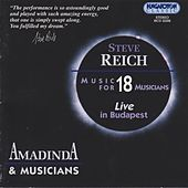 Reich: Music for 18 Musicians by Ida Szabo