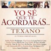 Yo Sé Que Te Acordarás Texano (20 Temas Originales) de Various Artists