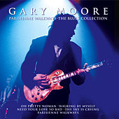The Blues Collection de Gary Moore