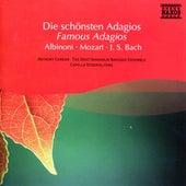 Albinoni / Mozart / Bach: Famous Adagios de Various Artists