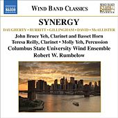 Wind Band Music - Daugherty, M. / Burritt, M. / Gillingham, D. (Synergy) by Various Artists