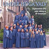 Under Hoga Valv by Various Artists