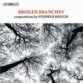 Broken Branches de Various Artists