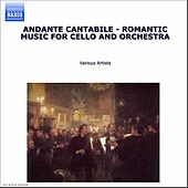 Andante: Romantic Music for Cello and Orchestra de Various Artists