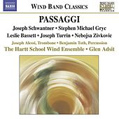 Gryc, S.M.: Passaggi / Zivkovic, N.J.: Tales From the Center of the Earth / Schwantner, J.: Recoil by Various Artists