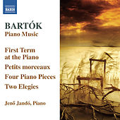 Bartók: Piano Music, Vol. 6 di Jeno Jando