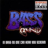 In Bass No One Can Hear You Scream von Bass Junkie