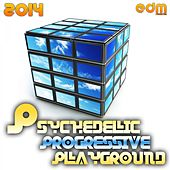 Psychedelic Progressive Playground 2014 by Various Artists