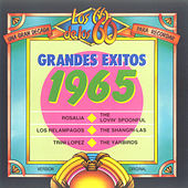Grandes Éxitos 1965 by Various Artists