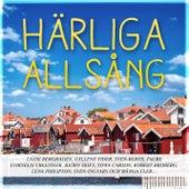 Härliga allsång - vår bästa sommar de Various Artists