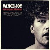 Mess Is Mine by Vance Joy