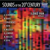 Sounds of the 20th Century by Ildiko Ivan