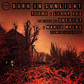 Burn in Sunlight by Various Artists