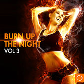 Burn up the Night, Vol. 3 by Various Artists