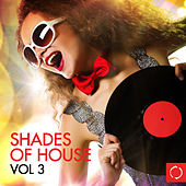 Shades of House, Vol. 3 von Various Artists