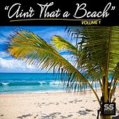 Ain't That A Beach Vol.1 von Various Artists