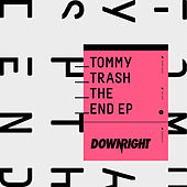 The End by Tommy Trash